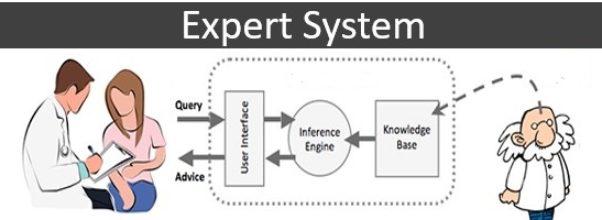 EXPERT-SYSTEM